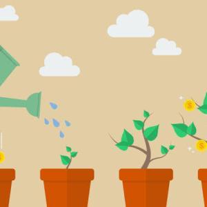 【初心者向け】投資信託初心者はインデックスファンドがおすすめな理由!初心者がさけるべき投資信託は?