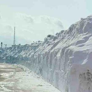 雪の山…(゚△゚;ノ)ノ