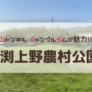 【東温市】お山やトンネルで自由な遊びが楽しめる公園『牛渕上野農村公園』のご紹介!