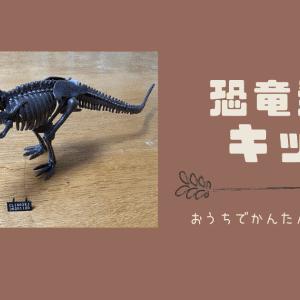 恐竜好きにおすすめ!自宅で本格的な発掘体験が楽しめる知育おもちゃを紹介します。