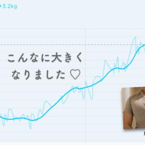 52kg から 79kg まで体重を増やした話