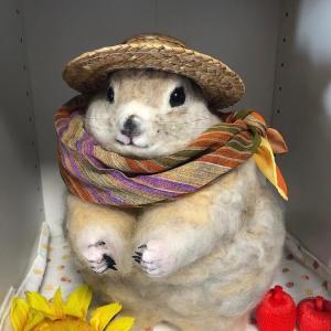 羊毛フェルトのリチャードソンジリス・ビッグサイズ