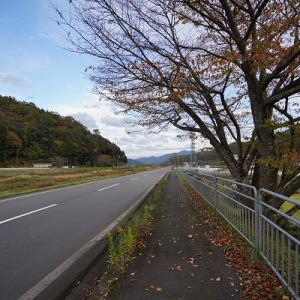 SONY α7cでZEISSFE16-35mm F4を使用@福井県おおい町