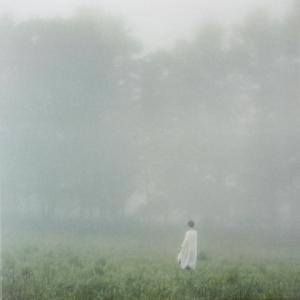 幼冬の朝靄のなかに