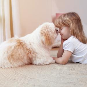 いい香りにはご用心、特に犬や猫ちゃん