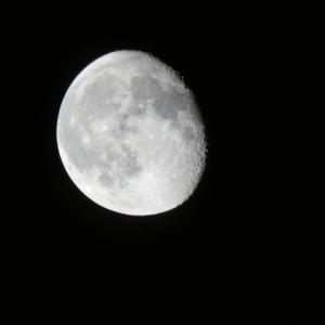 時代背景を知ると面白い! E.R.バロウズ『The Moon Men』の感想&解説