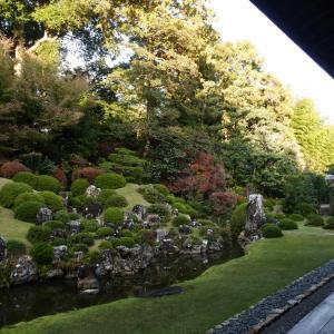 日本に恋をするー山水庭園.奥浜名湖  「小堀遠州作.龍潭寺庭園」