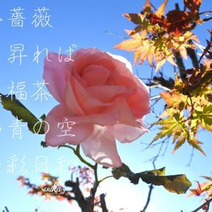 日本に恋をするー短歌 .ご挨拶は素敵な祝福語  「おはよう」「こんにちは」「こんばんは」