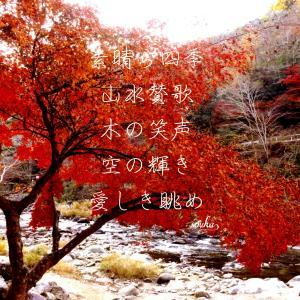 日本に恋をするー好き日