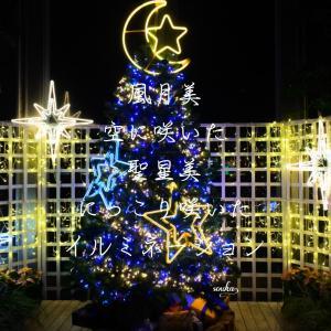 日本に恋をするー風月美聖星美の和み
