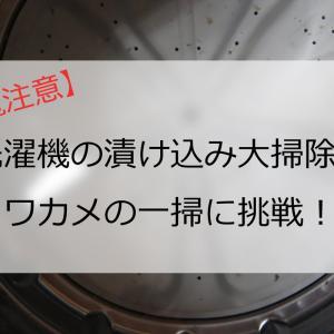 【閲覧注意】洗濯機の漬け込み大掃除でワカメの一掃に挑戦!