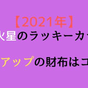 【2021年】九紫火星のラッキーカラー!! 金運アップの財布はコレ!!