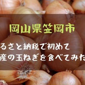 【岡山県笠岡市・玉ねぎ4kg】ふるさと納税で初めて岡山県産の玉ねぎを食べてみた