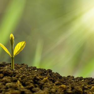 たった1つの意識が、人間的成長スピードを10倍にする