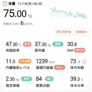今朝の体重(11月18日)