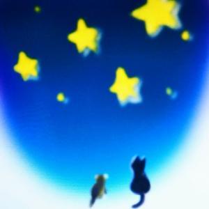七夕と星への祈り♥
