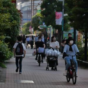 潮凪橋から晴海通りを歩いて豊洲駅へと向かう