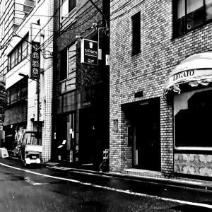 JR浜松町駅周辺 モノクロスナップ