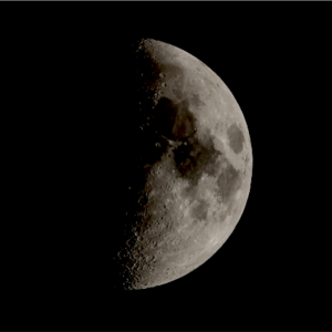月影の〈 TENET  テネット 〉