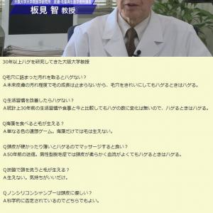 【悲報】田中みな実さん、薄毛治療を開始