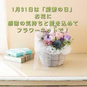 1月31日は「愛妻の日」お花に感謝の気持ちと愛を込めてフラワーネットで!