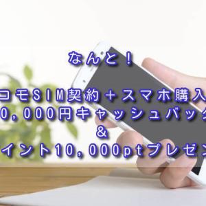 なんと!ドコモSIM契約+スマホ購入で10,000円キャッシュバック&dポイント10,000ptプレゼント