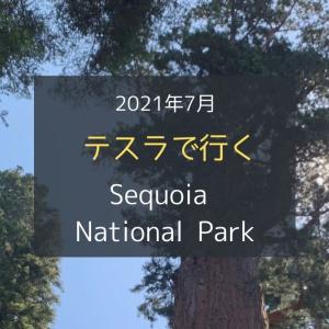 テスラで行く!2021年7月のセコイア国立公園の旅