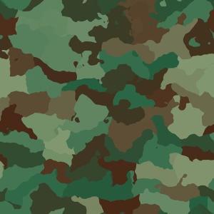 自衛隊員が考える「防衛省川柳」 第一生命主催 サラリーマン川柳の自衛隊版