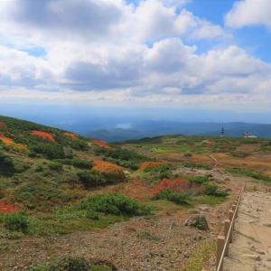 【乳幼児と秋の子連れトレッキング】北海道旭岳 姿見の池遊歩道を歩こう