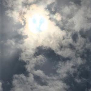 笑顔の太陽が応援してくれています