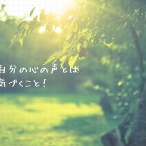 明日から冥王星逆行開始 破壊と再生の星を味方につけ人生を軽やかに生きるー2021/4/27(火)