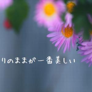 今日迎えるみずがめ座下弦の月、12日のおうし座新月に向けて意識してほしいことー2021/5/4