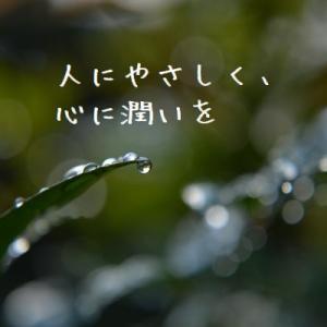 ネガティブな感情を「手放さなければ」と思って苦しくなっている方へ。手放しについての考え方5/15