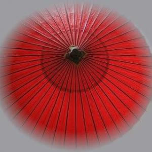 美しいわたしの日本:野だて傘