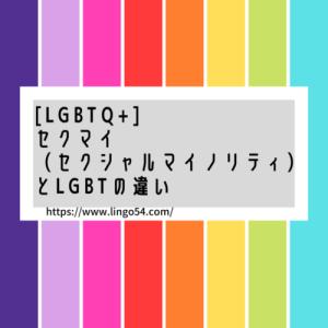 【LGBTQ+】セクマイ(セクシャルマイノリティ)とLGBTの違い
