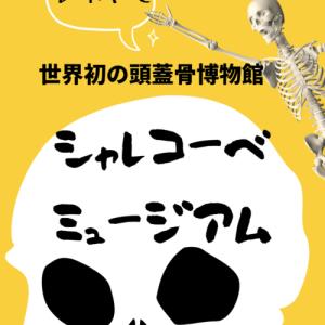 世界初の頭蓋骨博物館シャレコーベ・ミュージアムSkull museum【兵庫県】レポ
