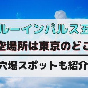 ブルーインパルスオリンピック2021上空場所は東京のどこ?穴場スポットや時間も紹介