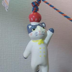 *そーっとのぞいてみてごらん* ゚Д゚))) キノコマートさん