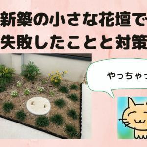 花壇を作る時に失敗したこと4つとその対策方法