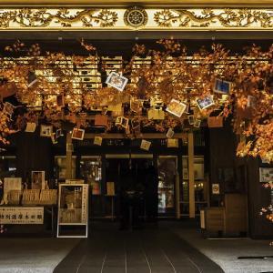亀岳林 万松寺 大須商店街で見た寺院の新しいカタチ 写真紀行