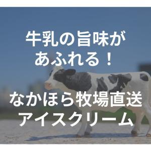 牛乳の旨味があふれる!なかほら牧場直送アイスクリーム【ご褒美級】