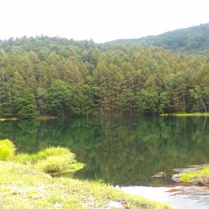 長野県 移住者が思う、山道運転の初心者が知るべき3つの知識+α