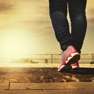 散歩できる幸せ