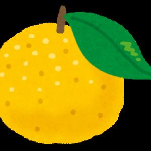 斎藤由貴が好きな長芋の柚子漬物はどこの?自分で作れるレシピ紹介!