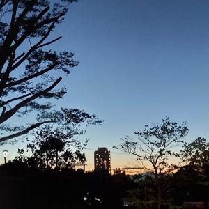 影絵のような夕暮れ。