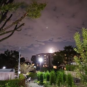 十五夜の満月。