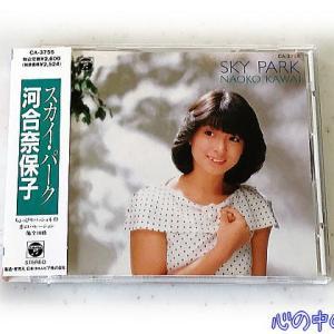 SKY PARK/河合奈保子♪