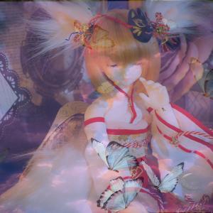 蝶の巫女の正体は…白狐さん