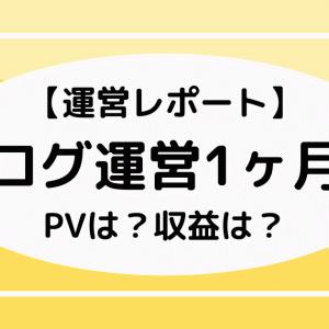 【運営レポート】ブログ運営1ヶ月目 | PVは?収益は?