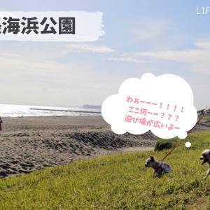 【犬とお出かけ】〜海編〜 雰囲気違いの7つのブロックに分かれた県立公園!